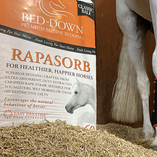 Bed-Down Rapasorb Bedding